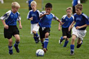 FA Youth Development Proposals
